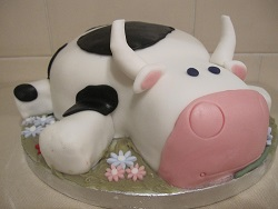 cow cake