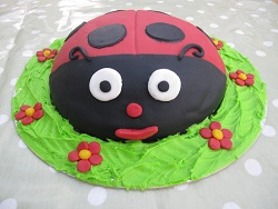 novelty ladybird birthday cake